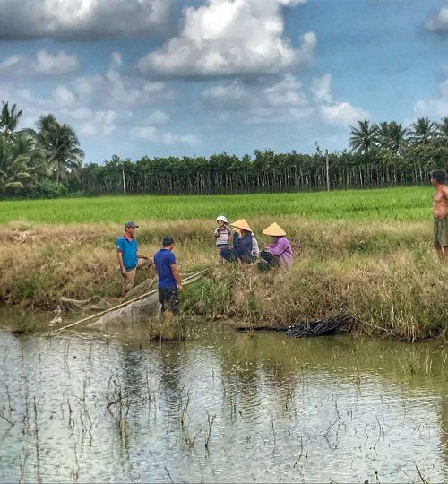 Mekong Delta, Víetnam
